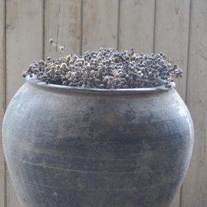 Originele oude  pot XL