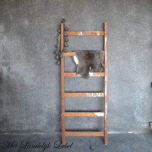 Oude ladder klein