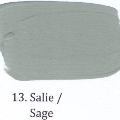 13. Salie