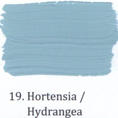 19. Hortensia