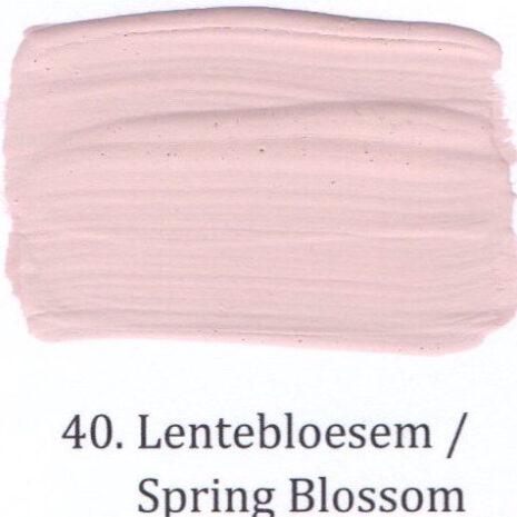 40. Lentebloesem