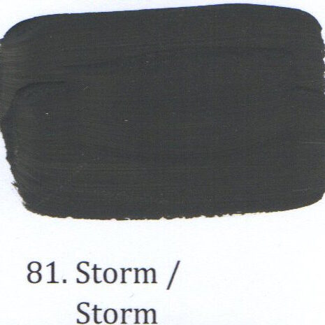81. Storm
