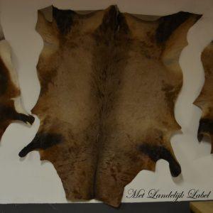 Hartenbeest (antilope) huid