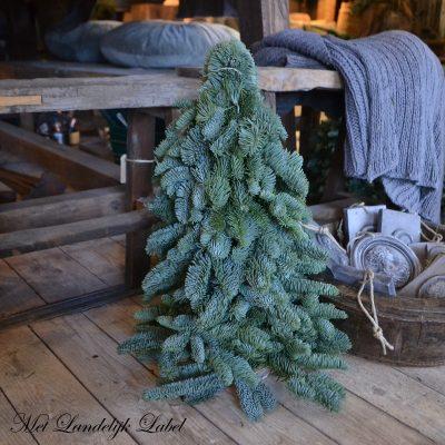 Kerstboom M