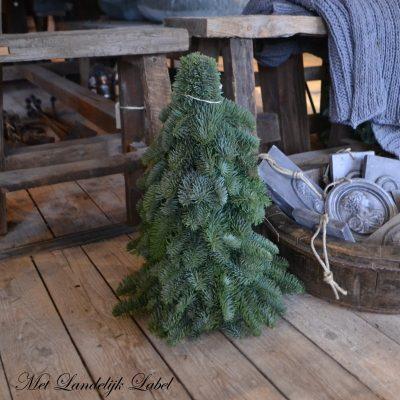 Kerstboom S