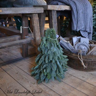 Kerstboom XS